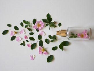 parfum im sommer